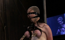 Tied up sluts moan in pleasure