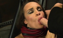 Brunette babe makes a big dick disappear